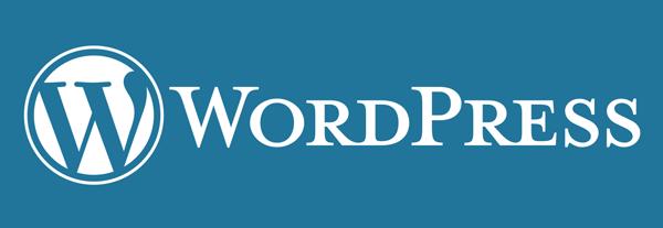 wat maakt wordpress zo populair